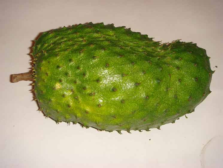 The Benefits of Soursop