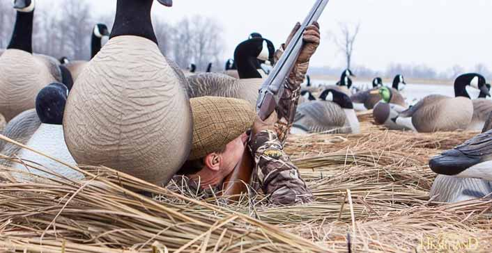 When is the Goose Hunting Season