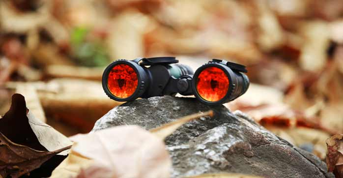 How Do We Use Binocular And Monocular Cues To See In Three Dimensions