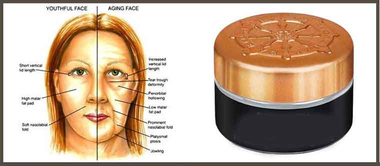 What you Need to Know Before Buying an Anti-Aging Cream