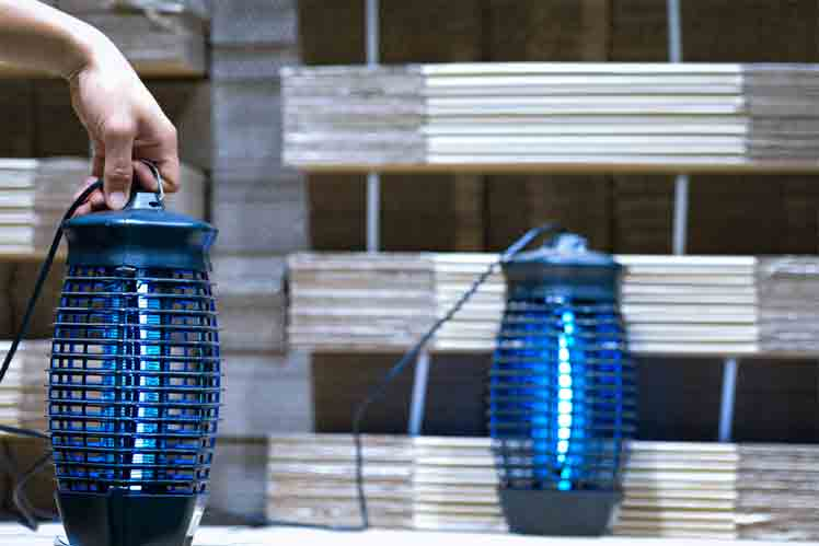 The Most Effective Ways to Attract Mosquitoes to Bug Zapper